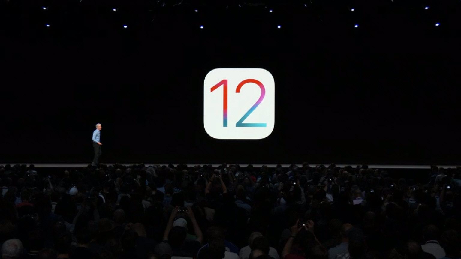 iOS12 一般リリース後は検証機に...
